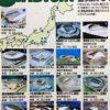 幻のワールドカップ2002日本単独開催【全15スタジアム】